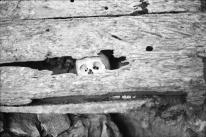Halb zerfallener Sarg in einem Höhlengrab.